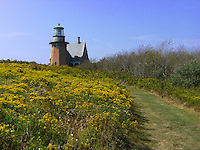 Late summer flowers line the path to Southeast Light.