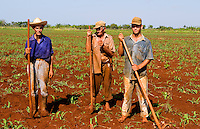 Simple farmers portait working fields in Havana Provence outdoors near Havana Cuba Habana