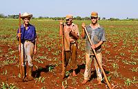 Simple farmers portait working fields in Havana Provence outdoors near Havana Cuba Habana
