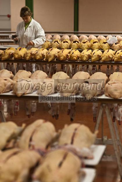 Europe/France/Midi-Pyrénées/32/Gers/Samatan: Le marché au gras- le vétérinaire aposse son cachet