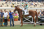 """DEL MAR, CA  JULY 30: #2 Stellar Wind with Victor Espinoza  in the winners' circle after winning the Clement L. Hirsch Stakes (Gl) """"Win and You're in Breeders' Cup Distaff Division"""" at Del Mar Turf Club in Del Mar, CA on July 30, 2016. (Photo by Casey Phillips/Eclipse Sportswire/Getty Images)DEL MAR, CA  JULY 30: #2 Stellar Wind with Victor Espinoza beat Beholder and Gary Stevens in the Clement L. Hirsch Stakes (Gl) """"Win and You're in Breeders' Cup Distaff Division"""" at Del Mar Turf Club in Del Mar, CA on July 30, 2016. (Photo by Casey Phillips/Eclipse Sportswire/Getty Images)"""