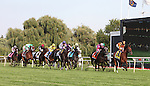 LITTLE MIKE and jockey Ramon A. Dominguez leading the field going into the first turn during the Arlington Million at Arlington Park 8-18-12