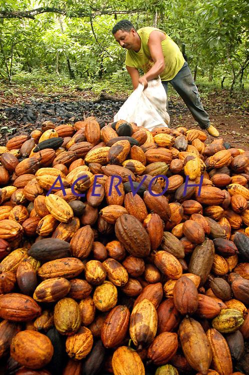 """Agricultor Valdemar Lira de Souza, maranhense, 36 anos,  trabalha com a produÁ""""o de cacau na transamazÙnica, <br /> Anap˙ , Par· , Brasil<br /> Foto Paulo Santos/Interfoto<br /> 168/02/2005"""