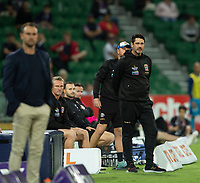27th March 2021; HBF Park, Perth, Western Australia, Australia; A League Football, Perth Glory versus Newcastle Jets; Craig Deans coach of the Newcastle Jets watches play