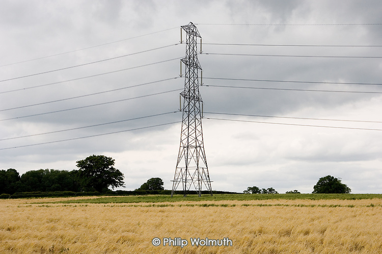 Electricity pylon on agricultural land in Hampshire