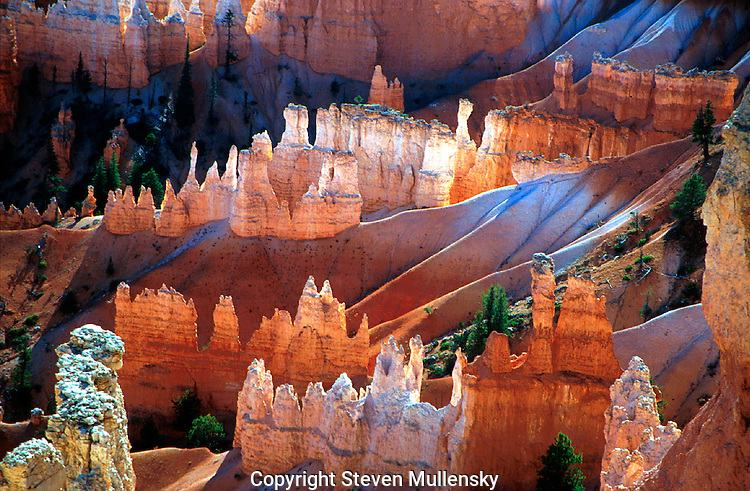 Bryce Canyon, famous for its unique geology, consists of a series of horseshoe-shaped amphitheaters carved from the eastern edge of the Paunsaugunt Plateau in southern Utah..Bryce Canyon National Park is a scientist's laboratory and a child's playground. Because Bryce transcends 2000 feet (650 m) of elevation, the park exists in three distinct climatic zones: spruce/fir forest, Ponderosa Pine forest, and Pinyon Pine/juniper forest. (NPS)