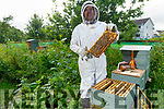 Beekeeper Daithi Creedon opens the beehive on the Manor Village walkway on Friday