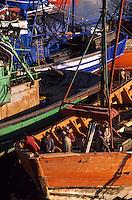 Afrique/Afrique du Nord/Maghreb/Maroc/Essaouira : Le port de pêche - Chantier naval