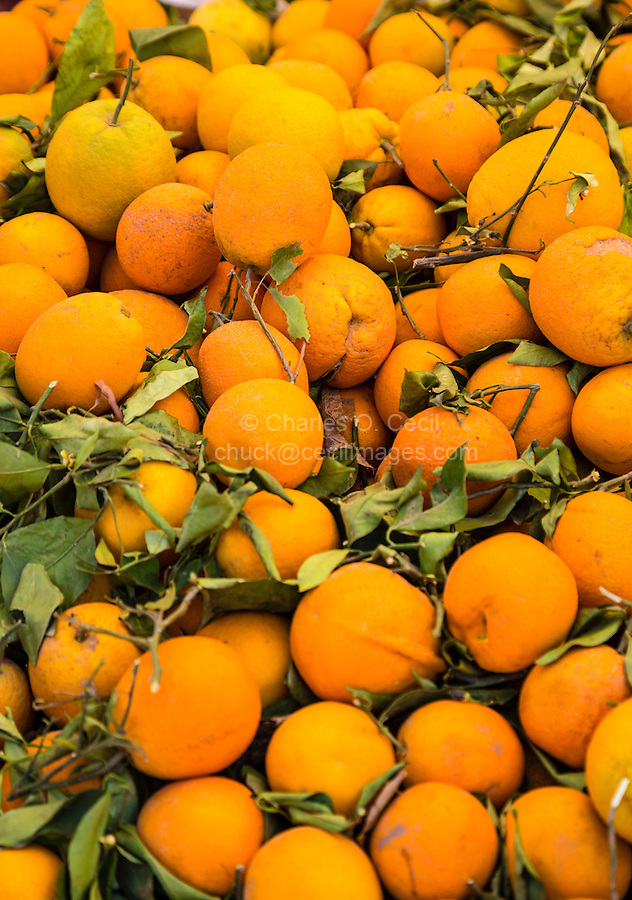 Morocco.  Freshly-picked Oranges, Had Draa Market, Essaouira Province.