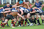 Leinster hooker Aaron Dundon drives the maul forward with flanker Josh Van Der Flier shielding the ball at the back.<br /> British & Irish Cup<br /> Carmarthen Quins v Leinster A<br /> Carmarthen Park<br /> 25.10.14<br /> ©Steve Pope-SPORTINGWALES