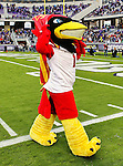 Iowa State Cyclones mascot, Cy the Cardinal, in action during the game between the Iowa State Cyclones and the TCU Horned Frogs  at the Amon G. Carter Stadium in Fort Worth, Texas. Iowa State defeats TCU 37 to 23..
