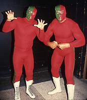 Randy Macho Man Savage Hulk Hogan1995                                                                     By John Barrett/PHOTOlink