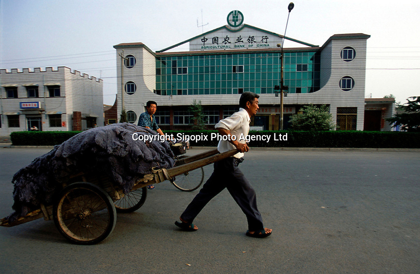 A man transports animal fur with a cart by a branch offices of the Agriculture Bank of China in Sangpo village, Jiaozuo district, Henan province..