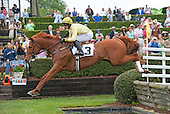 Vine Hill takes the water jump in front of the tower at Brooklandwood Race Course.