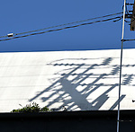 Electric Hollywood