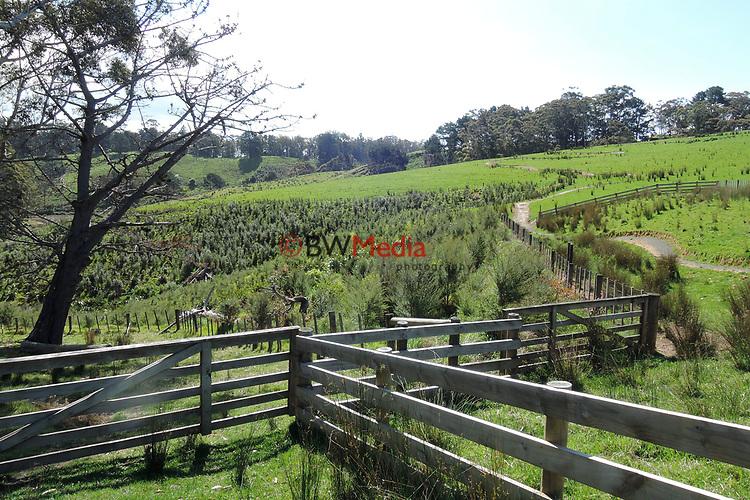 Waitawa Regional Park, Monday 8 October 2018. Photo: Simon Watts/www.bwmedia.co.nz