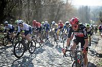 Tim Wellens (BEL/Lotto-Soudal) up the Mont Saint Laurent cobbled climb<br /> <br /> 73rd Kuurne - Brussels - Kuurne 2021<br /> ME (1.Pro)<br /> 1 day race from Kuurne to Kuurne (BEL/197km)<br /> <br /> ©kramon