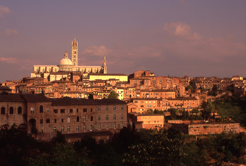 Europe, ITA, Italy, Tuscany, Siena, Cathedral  Santa Maria Assunta, Typical view on to the City in the Evening Light....[ For each utilisation of my images my General Terms and Conditions are mandatory. Usage only against use message and proof. Download of my General Terms and Conditions under http://www.image-box.com or ask for sending. A clearance before usage is necessary...Material is subject to royalties. Each utilisation of my images is subject to a fee in accordance to the present valid MFM-List...Contact | archive@image-box.com | www.image-box.com ]