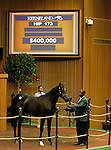 September 14, 2015: Hip 173, Speightstown - Cindy's Mom colt consigned by Taylor Made Sales. Candice Chavez/ESW/CSM
