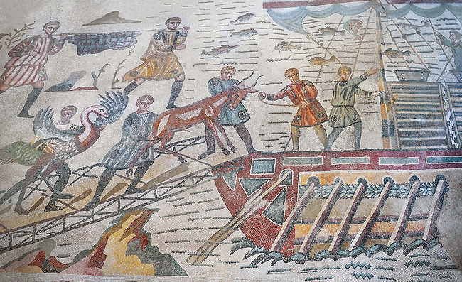Ambulatory of the Great Hunt Roman mosaic, african animals are loaded onto a ship, room no 28, at the Villa Romana del Casale, first quarter of the 4th century AD. Sicily, Italy. A UNESCO World Heritage Site.<br /> <br /> The Great Hunt ambulatory is around 60 meters long (200 Roman feet) and connects the master's northern apartments with the triclinium in the south. The door in the centre of the the Great Hunt ambulatory leads to audience hall. <br /> <br /> The Great Hunt Roman mosaic depicts African animals being hunted and put onto ships to be taken to the Colosseum.