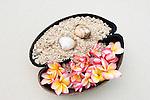 Seychelles: half Coco de Mer filled with sand, shells and petals