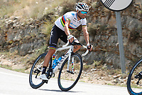 ESPAÑA, 28-08-2019: Alejandro Valverde (ESP - MOVISTAR) durante la etapa 5, hoy, 28 de agosto de 2019, que se corrió entre L' Eliana y el Observatorio Astrofísico de Javalambre con una distancia de 170,7 km como parte de La Vuelta a España 2019 que se disputa entre el 24/08 y el 15/09/2019 en territorio Español. / Alejandro Valverde (ESP - MOVISTAR) during stage 5 today, August 28, 2019, from L'Eliana to Javalambre Astrophysical Observatory with a distance of 170,7 km as part of Tour of Spain 2019 which takes place between 08/24 and 09/15/2019 in Spain.  Photo: VizzorImage / Luis Angel Gomez / ASO<br />