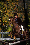 Horse Jumping, Autumn, New York State