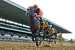 September 29, 2018 : Imperial Hint, wins the Vosburgh on Jockey Club Gold Cup Day at Belmont Park on September 29, 2018 in Elmont, New York. Scott Serio/Eclipse Sportswire/CSM
