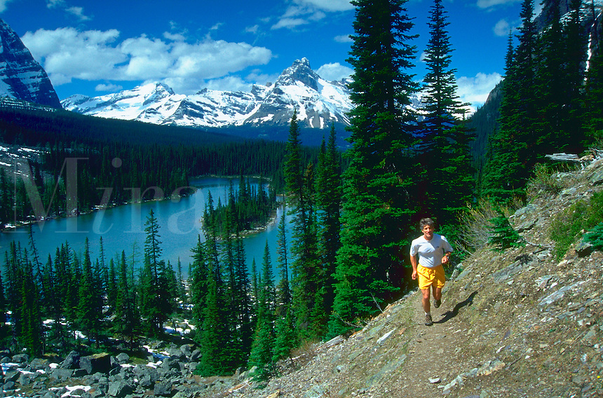 Man running along a rocky path above Lake O'Hara in Yoho National Park in the Canadian Rockies with snow covered mountains in the distance.