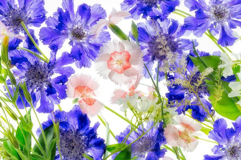 Mixed flower arrangment