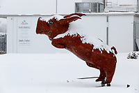 Snow continues to fall Monday, February 15, 2021, on a large hog statue outside of Pinnacle Foods in Fayetteville. The National Weather Service is forecasting several inches of snow throughout the state through Wednesday and Thursday. Check out nwaonline.com/210216Daily/ and nwadg.com/photos for a photo gallery.<br /> (NWA Democrat-Gazette/David Gottschalk)