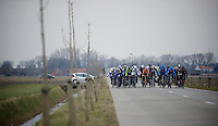 Gent-Wevelgem 2013.One of the echelons plowing its way through the open, windy Fields of De Moeren (lowest point in Belgium; 3m under sea-level).Wind is king here.