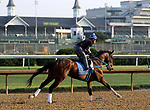 LOUISVILLE, KY -MAY 28: Tenfold, ridden by Angel Garcia, prepares to train at Churchill Downs, Louisville, Kentucky, accompanied by assistant trainer Scott Blasi on pony. (Photo by Mary M. Meek/Eclipse Sportswire/Getty Images)