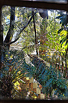 Foliage, Newport Beach, CA