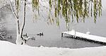Ducks swim near the Wisconsin River shoreline at Pfiffner Pioneer Park as a heavy and wet snow falls. (DOUG WOJCIK/STEVENS POINT JOURNAL)