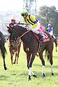 Horse Racing: Hochi Hai Fillies' Revue