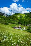 Oesterreich, Salzburger Land, Pinzgau, oberhalb von St. Martin bei Lofer: das Wildental vor den Berchtesgadener Alpen | Austria, Salzburger Land, Pinzgau, above St. Martin near Lofer: Wildental and Berchtesgaden Alps