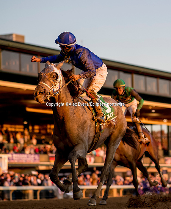 November 6, 2020:  Essential Quality, ridden by Luis Saez, wins the TVG Juvenile Presented By Thoroughbred Aftercare Alliance on Breeders' Cup Championship Friday at Keeneland on November 6, 2020: Alex Evers/Eclipse Sportswire/Breeders Cup/CSM