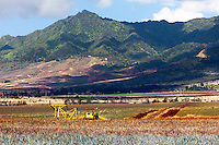 Dole Pineapple tractor with mountain in background, Wahiawa, O'ahu