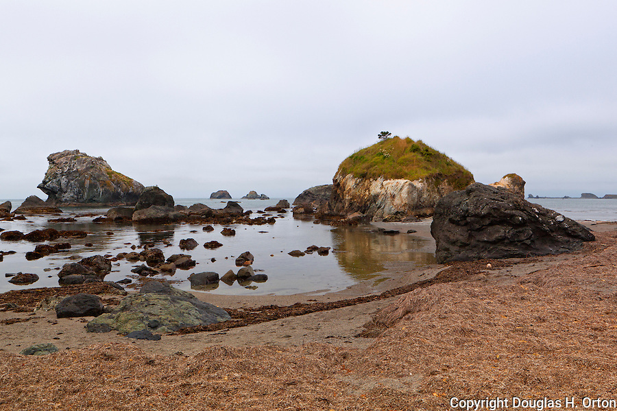Ocean Beaches, Crescent City, California Coast are easily accessed from points along the city coastline.  Low tide reveals sand beaches, tide pools,and kelpo.  Popular for beach walks, tide pooling, scuba,and kayaking.