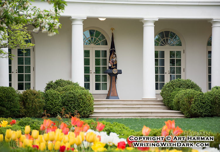 White House Rose Garden by Art Harman. Presidents often give statements and speeches from the podium seen at the door to the Oval Office.