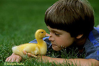 DG12-026x  Pekin Duck -ten day old duckling with boy