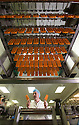 """19/06/16<br /> <br /> Nick Tanzarella, production manager, checks quality on production line.<br /> <br /> <br /> """"The last couple of days have sent the factory into meltdown,"""" exclaimed Pasquale Tanzarella, director of one of the UK's largest independent ice-lolly manufacturers.<br /> <br /> In fact, today alone, his factory will make more than 200,000 ice lollies, which will be sold up and down the country through traditional ice-cream vans and shops. <br /> <br /> Demand has been so high because of the recent hot spell that the cold rooms at Franco's ices, in Kempston, Bedfordshire, are already full to bursting, with more than 40 different varieties of ice-cream and ice-lollies, and today's production of Tasty Orange lollies will probably be on sale by late afternoon.<br /> <br /> The lollies start life in a huge 2,000-litre vat, as a syrupy, bright orange liquid, before being poured into the traditional ice-lolly moulds.<br /> <br /> From there they are passed over a fast-freezer, at around -36C, to super cool the liquid into ice, which only takes around 20 minutes, before being loaded into their colourful outer wrapper.<br /> <br /> And then it's straight into wholesale boxes, stored in the factory's cold rooms, and sold the very same day.<br /> <br /> It's a super success story for this family-run business, which was founded in1964 by Pasquale's father, Domenico Tanzarella, originally to sell ice-creams through a local chain of vans.<br /> <br /> """"In the 70s we used to only supply vans within about a 60-mile radius of the factory,"""" said Pasquale.<br /> <br /> """"But we've grown steadily over the years and now we export to Cyprus, Ireland and even South Africa, as well as being one of the biggest suppliers here in the UK.<br /> <br /> """"Our best seller by far is the Mr Bubble ice-lolly,"""" said Pasquale. """"We were the very first company to launch a bubble gum flavoured lolly and it's been our best seller ever since.""""<br /> <br /> Last year they sold more than five mi"""