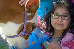 Gladys Cervantes Mejia, 6, of Fremont Elementary School in Carson City, Nev., participates in the cow plop fundraiser, where she was able to meet Buttercup, a Holstein Ayrshire mix Friday, April 15, 2016.<br /> Photo by Candice Nyando