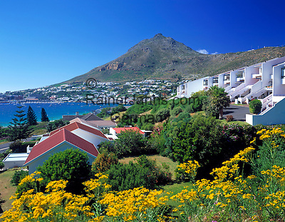 South Africa, near Cape Town, Simon's Town at False Bay