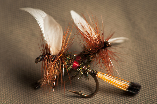A pair of Royal Wulff dry flies.