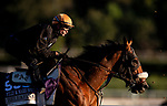 OCT 26:Breeders' Cup Filly & Mare Sprint entrant Bellafina, trained by Simon Callaghan, with Flavien Prat works at Santa Anita Park in Arcadia, California on Oct 26, 2019. Evers/Eclipse Sportswire/Breeders' Cup