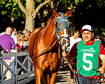 SEPT 06, 2021: STREET FIGHT in the Gr.1 Hopeful  Stakes, for 2-year olds, going 7 furlongs, at Saratoga Racecourse, Saratoga Springs, New York. Sue Kawczynski/Eclipse Sportswire/CSM
