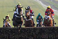 Zimbabwe ridden by Liam Heard leads during the @Plumptonraceday Twitter Handicap Chase - Horse Racing at Plumpton Racecourse, East Sussex - 12/03/12 - MANDATORY CREDIT: Gavin Ellis/TGSPHOTO - Self billing applies where appropriate - 0845 094 6026 - contact@tgsphoto.co.uk - NO UNPAID USE.