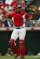 Jose Molina of the Anaheim Angels during a 2003 season MLB game at Angel Stadium in Anaheim, California. (Larry Goren/Four Seam Images)